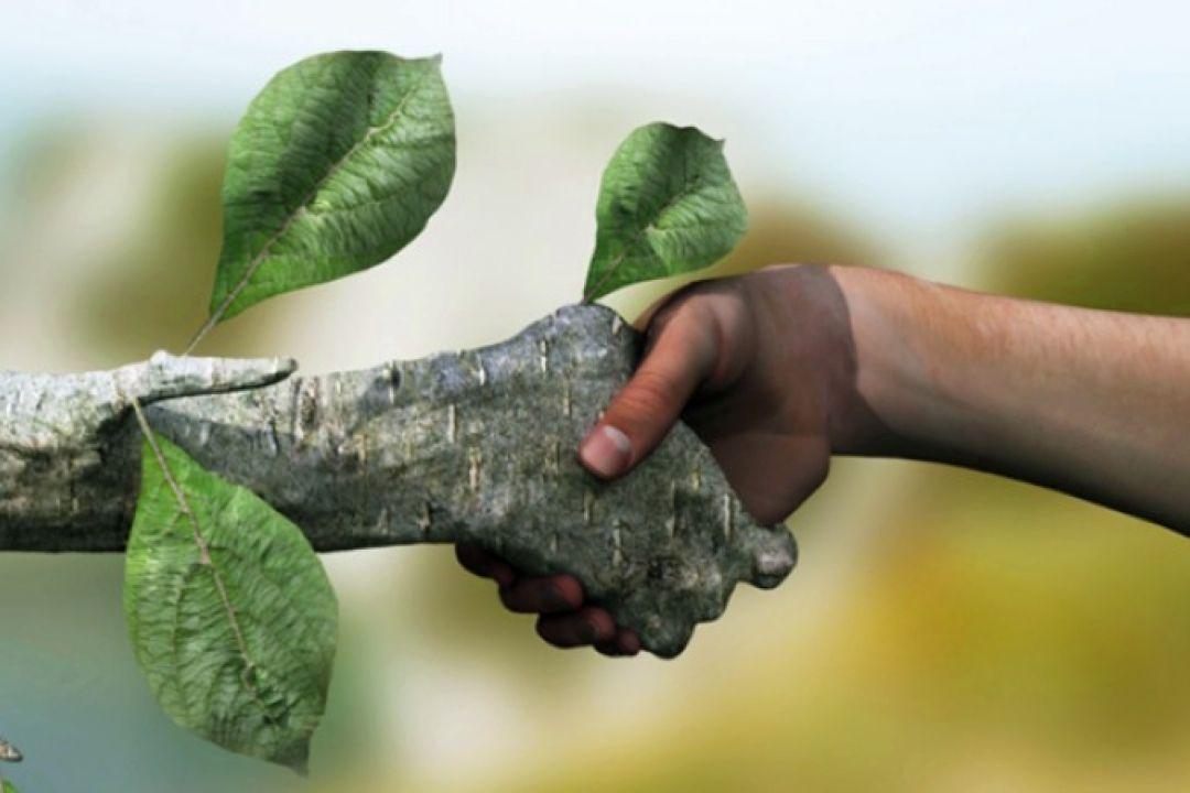 نتیجه تصویری برای حفظ محیط زیست