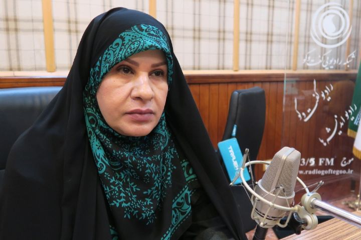 Image result for رئیس دبیرخانه ستاد حمایت از مشاغل خانگی