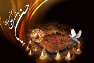 پیمان امام حسن (ع) با معاویه برای منع تعرض نسبت به شیعیان بود