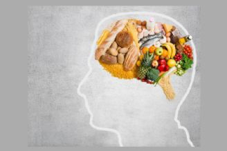 شکلات تلخ و ترکیبات نشاستهای، رژیم غذایی موثر برای مغز