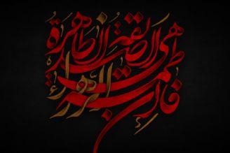حضرت زهرا(س) از حضرت علی(ع) به عنوان یک تفکر دفاع کردند