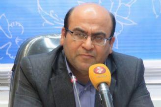 دلایل شهرداری تهران برای پلمپ مراکز درمانی دامپزشکی غیرقابل توجیه است