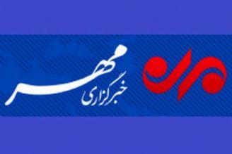 روزانه 950 تن مرغ با قیمت مصوب در تهران توزیع می شود