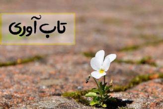 تابآوری در فرهنگ ایرانی